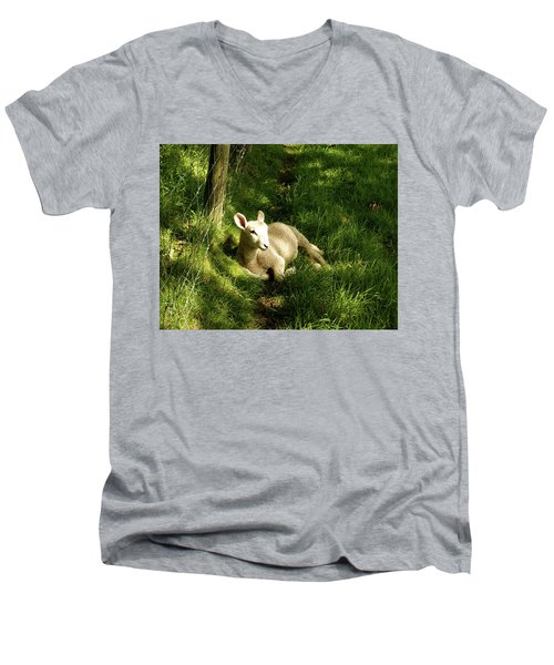 20/06/14  Keswick. Lamb In The Woods. Men's V-Neck T-Shirt