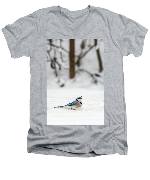 2019 First Snow Fall Men's V-Neck T-Shirt