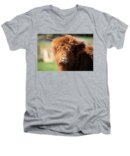 Highland Cow On The Farm Men's V-Neck T-Shirt