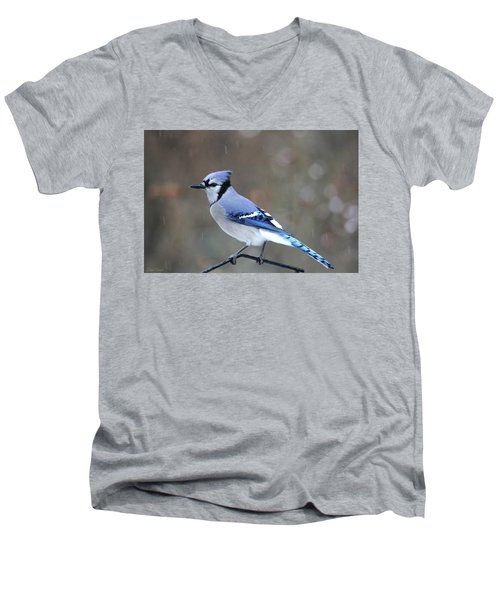 A Snowy Day With Blue Jay Men's V-Neck T-Shirt