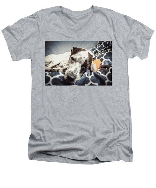 Abbey And Her Injured Paw Men's V-Neck T-Shirt