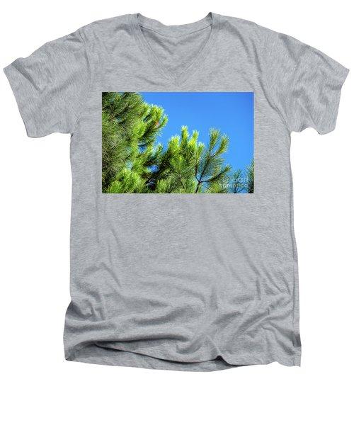 Adriatic Pine Against Blue Sky  Men's V-Neck T-Shirt