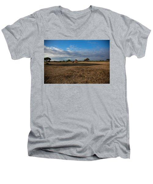 Amboseli Men's V-Neck T-Shirt