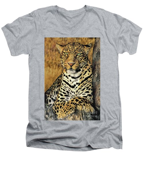Men's V-Neck T-Shirt featuring the photograph African Leopard Portrait Wildlife Rescue by Dave Welling