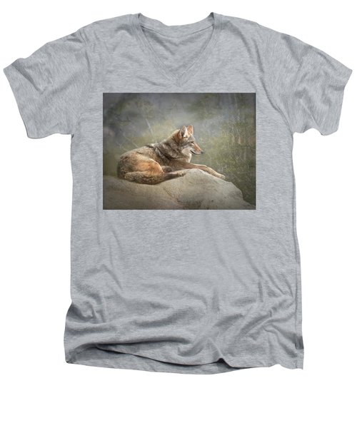 Afternoon Repose Men's V-Neck T-Shirt