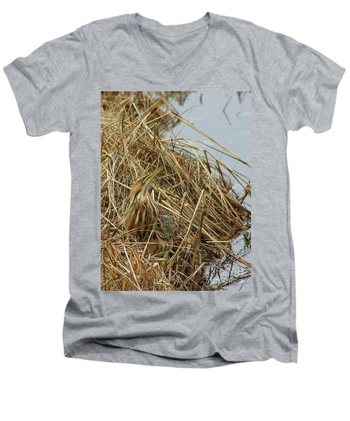 American Bittern Men's V-Neck T-Shirt
