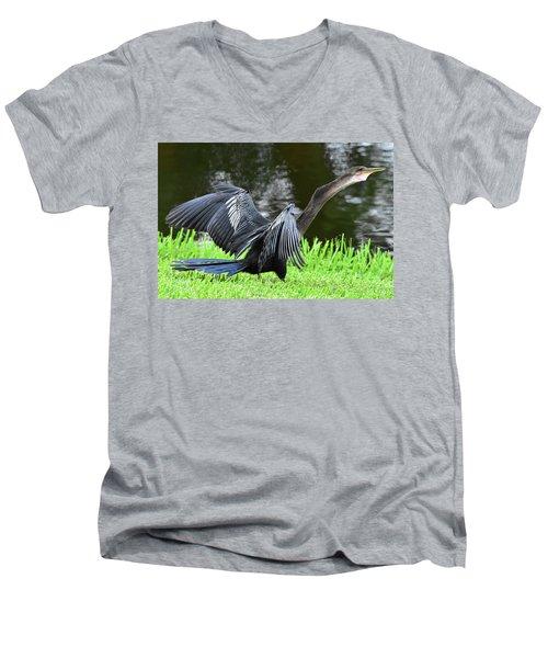 Anhinga Surprise Men's V-Neck T-Shirt