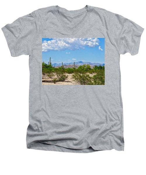 Arizona Desert Hidden Valley Men's V-Neck T-Shirt