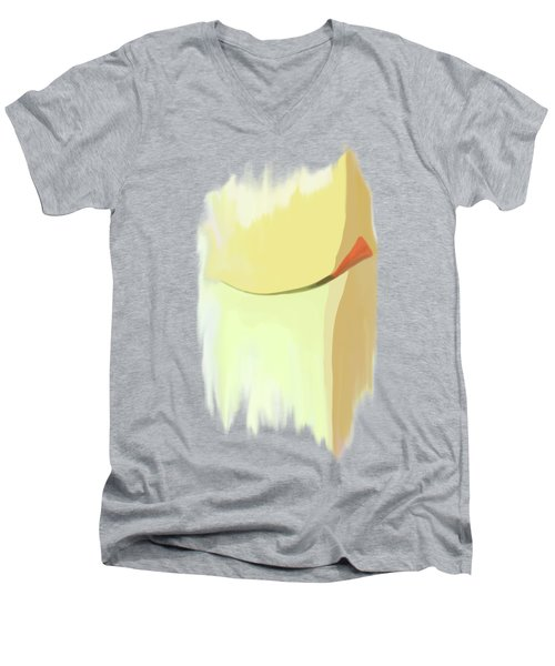 Memento Men's V-Neck T-Shirt