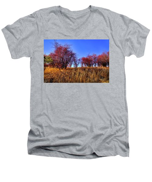 Men's V-Neck T-Shirt featuring the photograph Autumn Sun by David Patterson