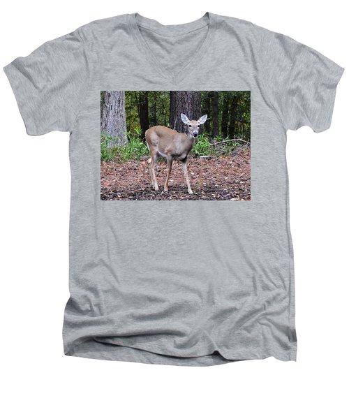 Baby Doe Men's V-Neck T-Shirt