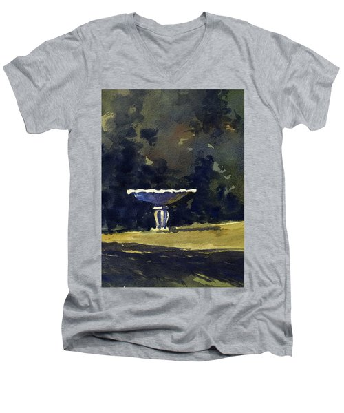 Bird Bath Men's V-Neck T-Shirt