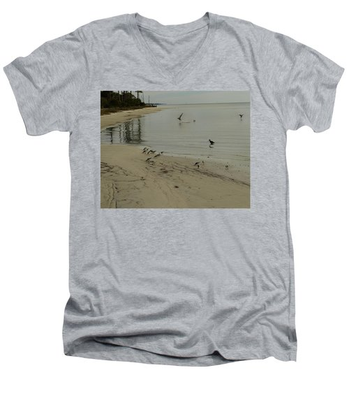 Birds On Beach Men's V-Neck T-Shirt