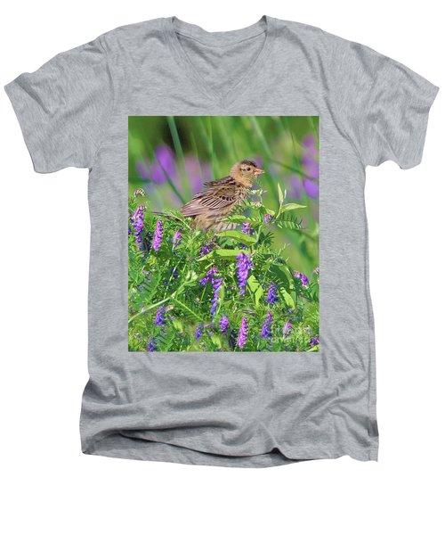 Bobolink Men's V-Neck T-Shirt
