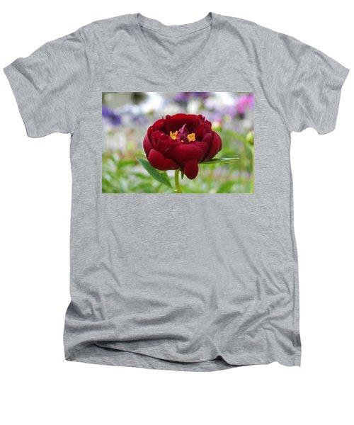 Bold Garnet Men's V-Neck T-Shirt