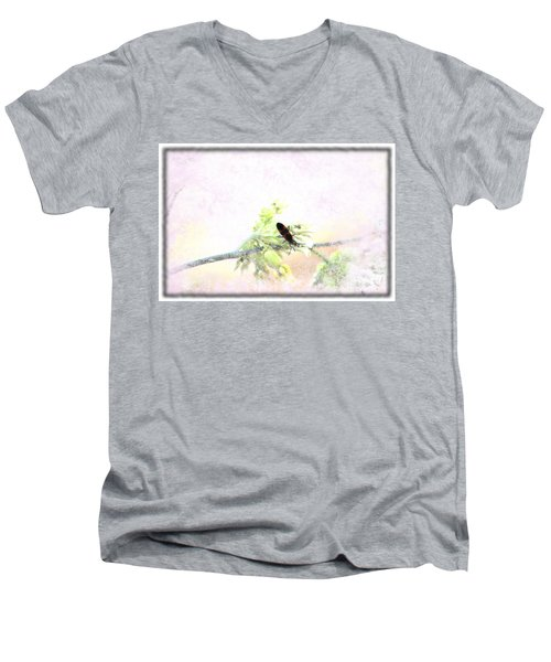 Boxelder Bug In Morning Haze Men's V-Neck T-Shirt