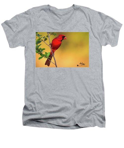 Bright Red Cardinal Men's V-Neck T-Shirt
