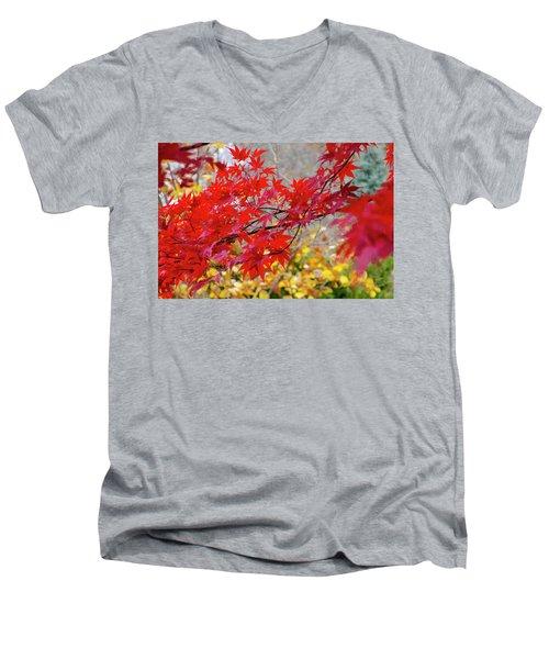 Brilliant Fall Color Men's V-Neck T-Shirt