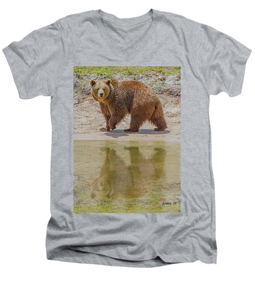 Brown Bear Reflection Men's V-Neck T-Shirt