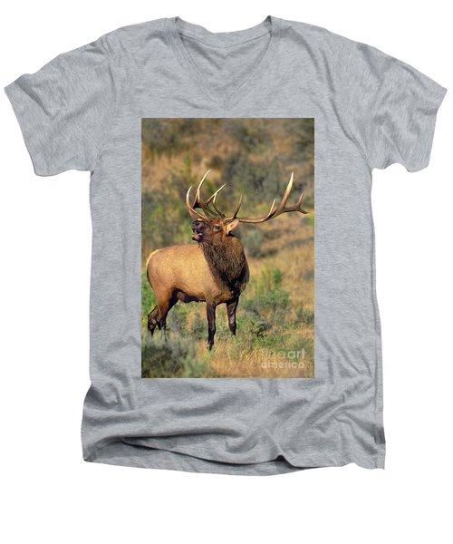 Bull Elk In Rut Bugling Yellowstone Wyoming Wildlife Men's V-Neck T-Shirt
