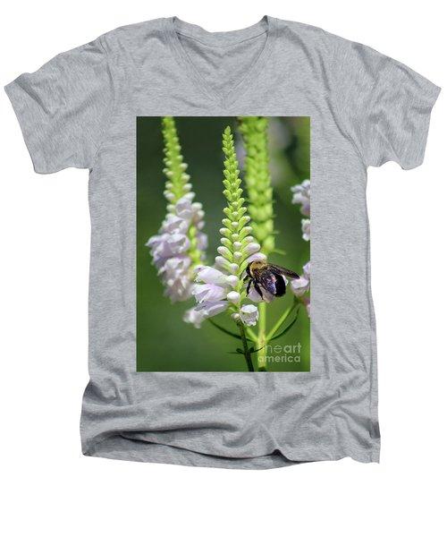 Bumblebee On Obedient Flower Men's V-Neck T-Shirt