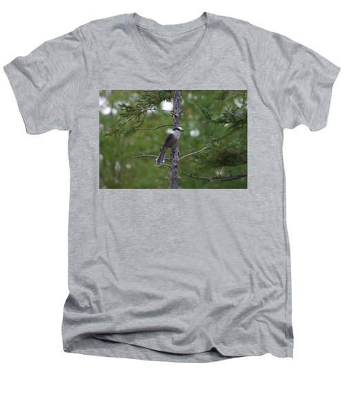 Canada Jay 101305 Men's V-Neck T-Shirt