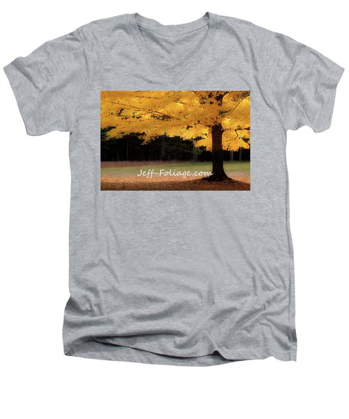 Canopy Of Gold Fall Colors Men's V-Neck T-Shirt