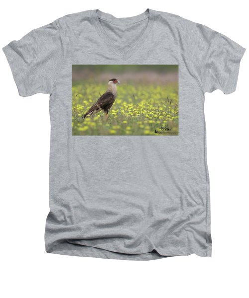 Caracara In Spring Men's V-Neck T-Shirt