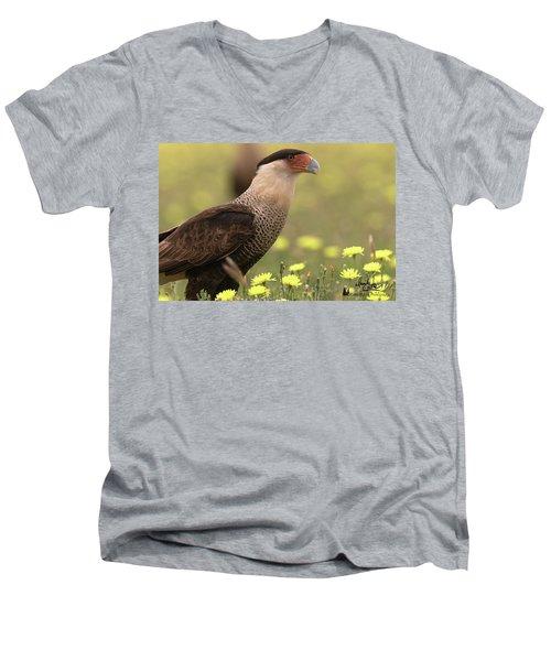 Caracara In Wildflowers Men's V-Neck T-Shirt