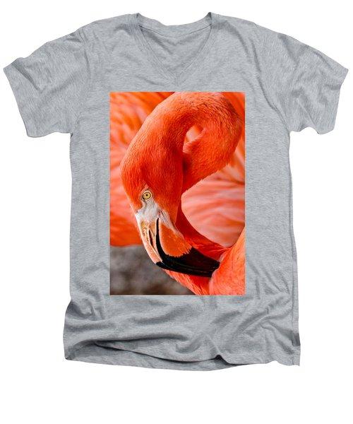 Caribbean Flamingo Men's V-Neck T-Shirt