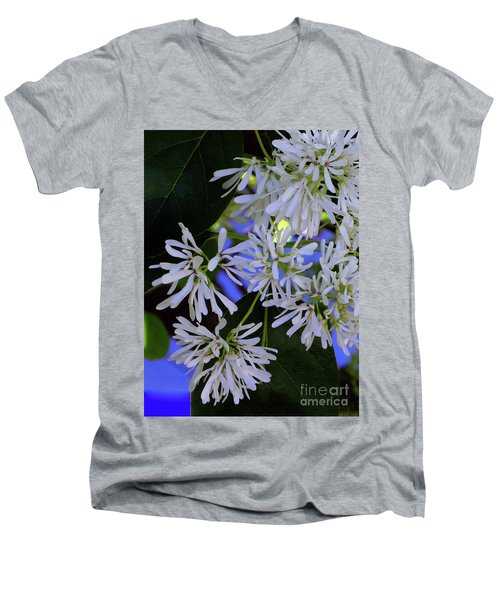 Carly's Tree - The Delicate Grow Strong Men's V-Neck T-Shirt