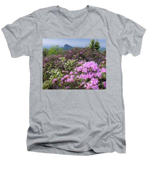 Catawba Rhododendron Table Rock  Men's V-Neck T-Shirt