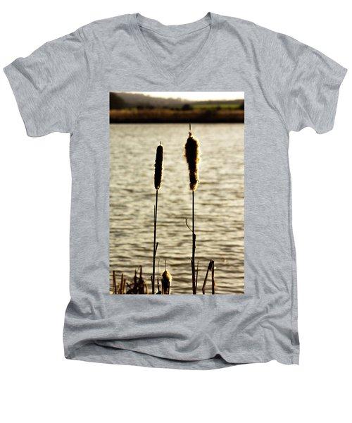 Cattails In The Sun Men's V-Neck T-Shirt