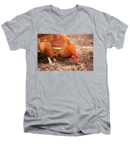 Chicken On The Farm Men's V-Neck T-Shirt