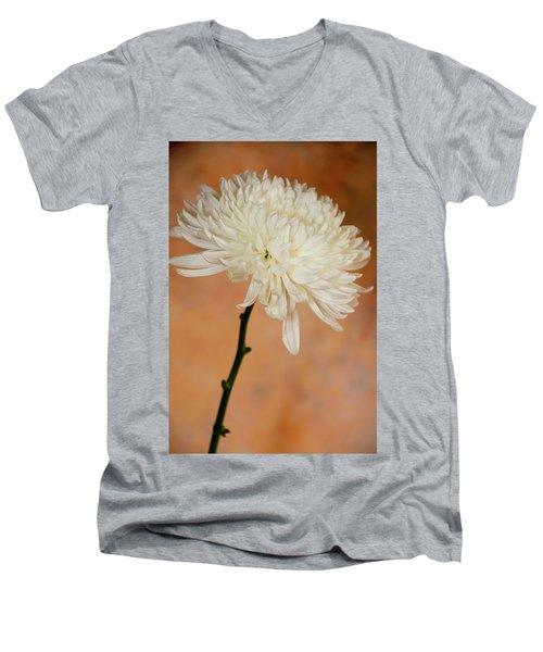 Chrysanthemum On Canvas Men's V-Neck T-Shirt