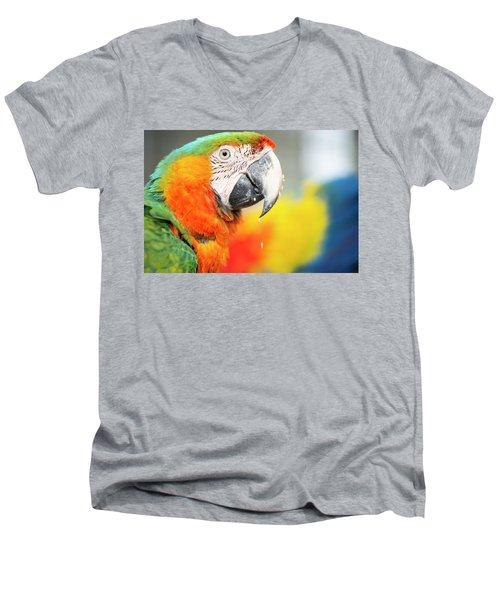Close Up Of The Macaw Bird. Men's V-Neck T-Shirt