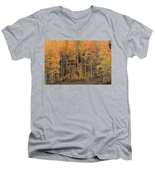 Colorado Guardians Men's V-Neck T-Shirt
