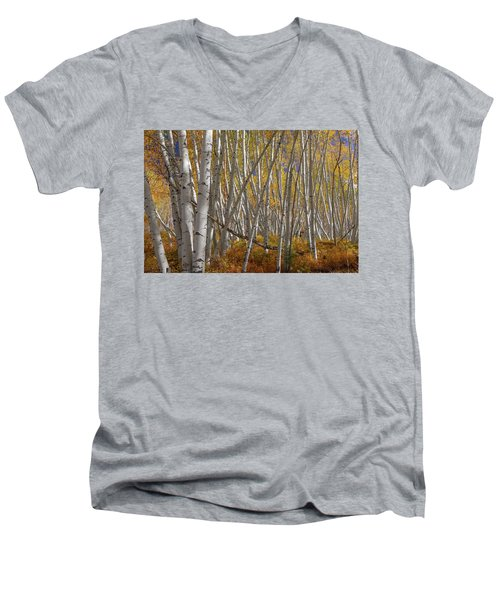 Men's V-Neck T-Shirt featuring the photograph Colorful Stick Forest by James BO Insogna