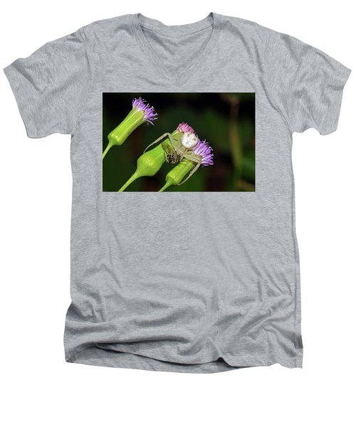 Crab Spider With Bee Men's V-Neck T-Shirt