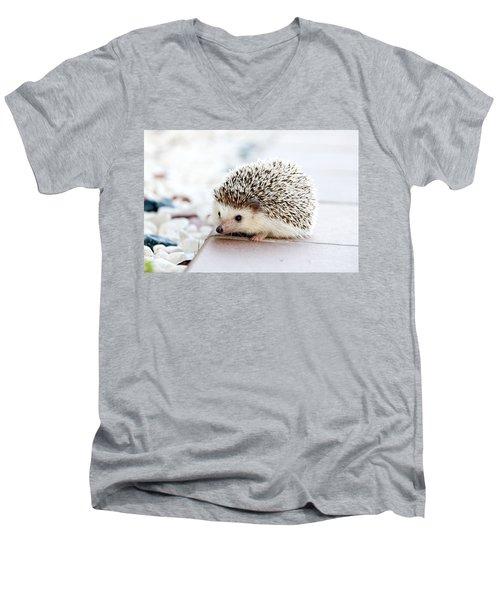 Cute Hedgeog Men's V-Neck T-Shirt