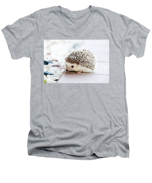 Cute Hedgeog Men's V-Neck T-Shirt