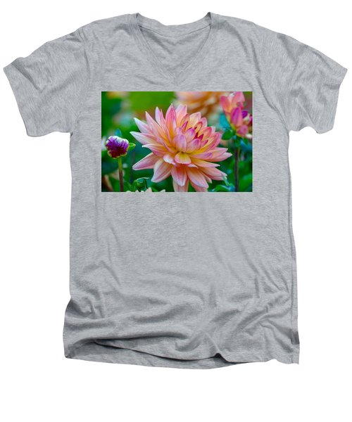 Dahlia Splendor Men's V-Neck T-Shirt
