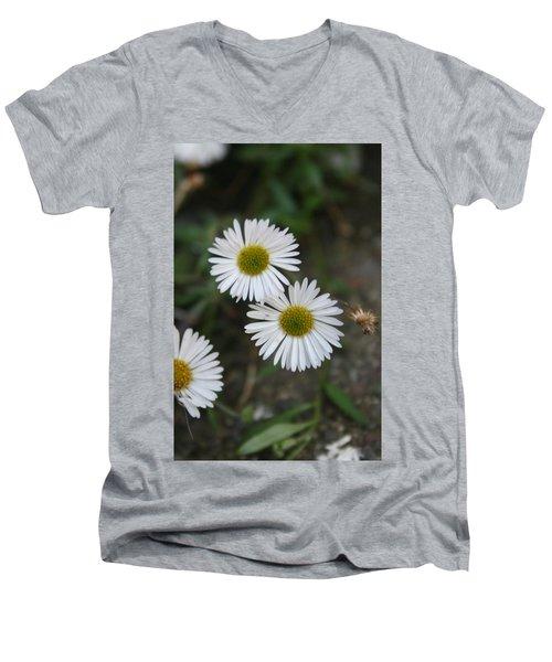 Daisy Daisy And Your White Petal Minding The Sun Core Men's V-Neck T-Shirt