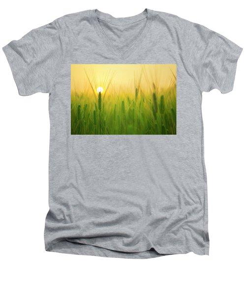 Dawn At The Wheat Field Men's V-Neck T-Shirt