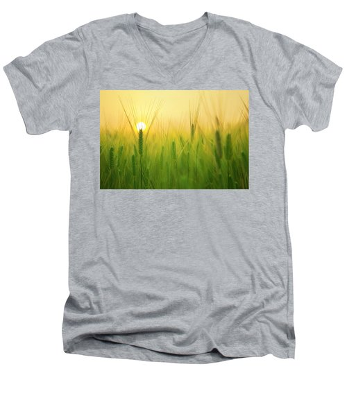 Dawn At The Wheat Field Men's V-Neck T-Shirt