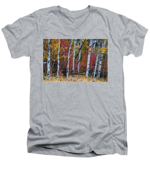 Deep Aspens Men's V-Neck T-Shirt