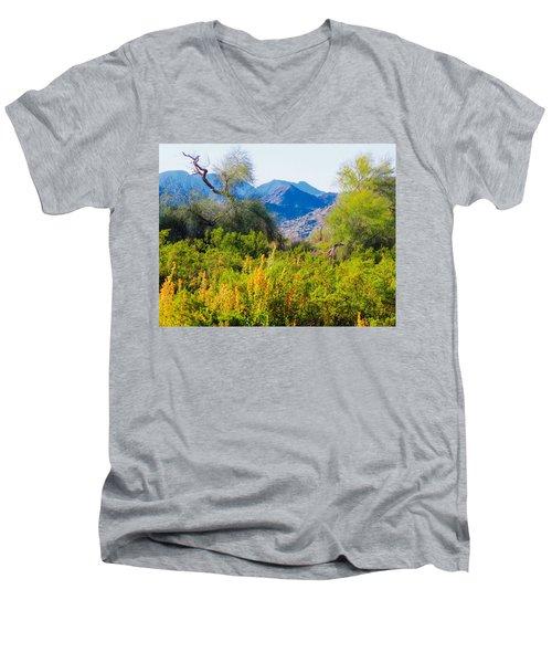 Deep Desert Valley In A Sonoran Desert Spring Men's V-Neck T-Shirt