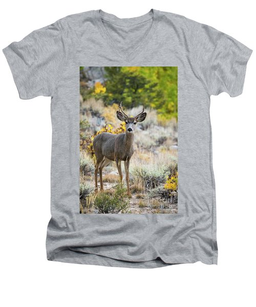 Men's V-Neck T-Shirt featuring the photograph Deer by Vincent Bonafede