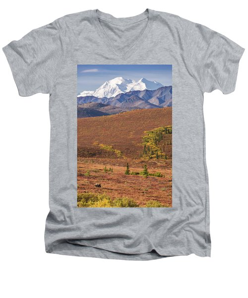 Denali Grizzly Men's V-Neck T-Shirt