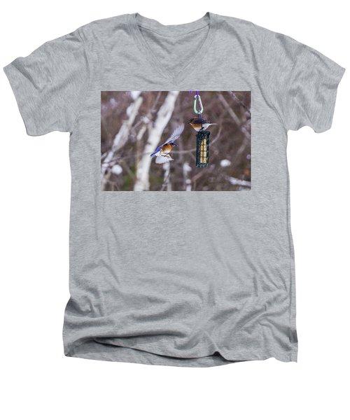 Docking Bluebird Men's V-Neck T-Shirt